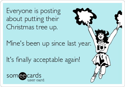 Text - Everyone is posting about putting their Christmas tree up. Mine's been up since last year. It's finally acceptable again! someecards user card