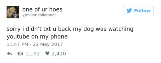 dog tweet - Text - one of ur hoes Follow @miliondollameat sorry i didn't txt u back my dog was watching youtube on my phone 11:47 PM - 22 May 2017 1,192 2,410