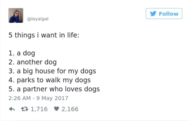 dog tweet - Text - Follow @loyalgal 5 things i want in life: 1. a dog 2. another dog 3. a big house for my dogs 4. parks to walk my dogs 5. a partner who loves dogs 2:26 AM - 9 May 2017 t1,716 2,166