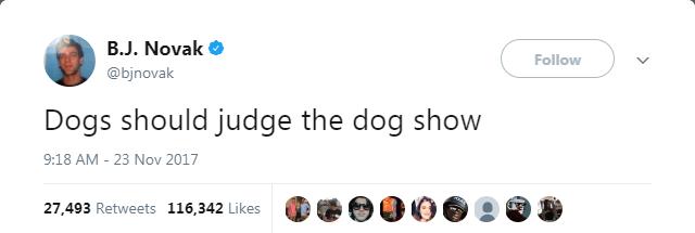 dog tweet - Text - B.J. Novak Follow @bjnovak Dogs should judge the dog show 9:18 AM - 23 Nov 2017 27,493 Retweets 116,342 Likes