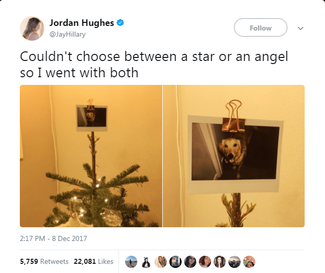 dog tweet - Organism - Jordan Hughes Follow @JayHillary Couldn't choose between a star or an angel so I went with both 2:17 PM 8 Dec 2017 5,759 Retweets 22,081 Likes