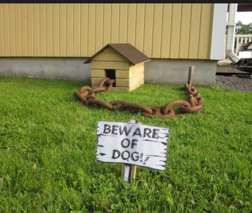 Grass - BEWARE OF DOG!