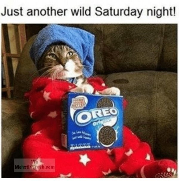 caturday meme about Saturday nights with pic of cat dressed in a onesie and holding a pack of Oreo cookies