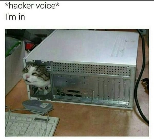 caturday meme about hacking with pic of a cat inside a computer cpu