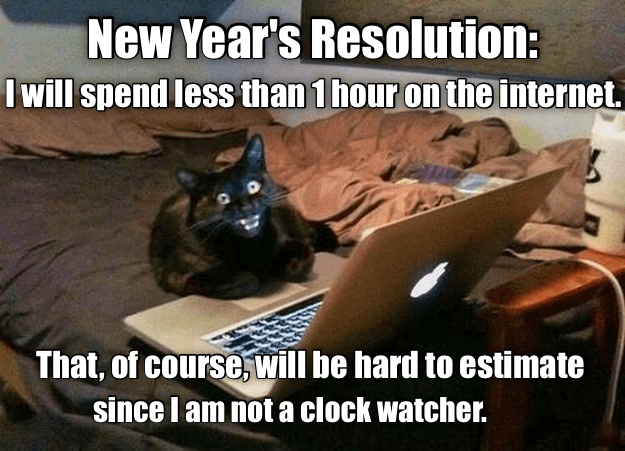 Funny Meme For New Year : New year s resolution lolcats lol cat memes funny cats