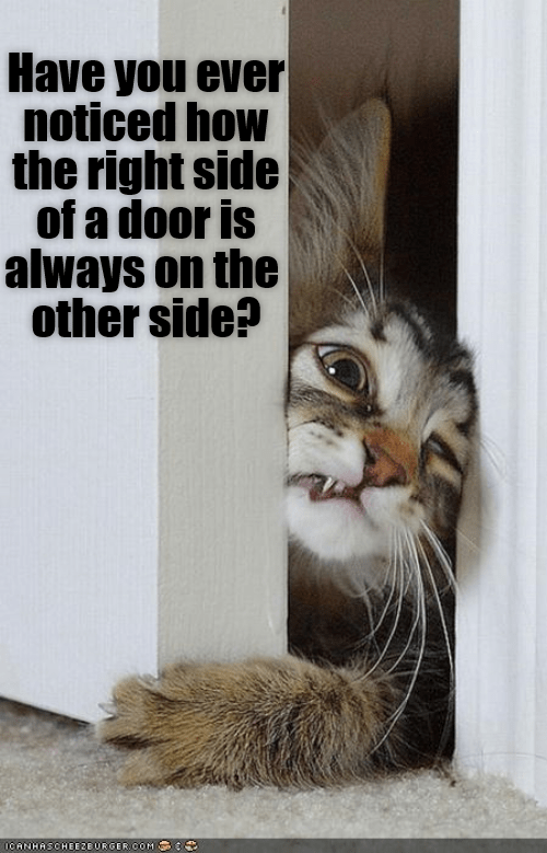 Cat - Have you ever noticed how the right side of a door is always on the other side? OCANHASCHEE2E URGER COM