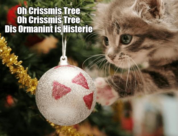Christmas ornament - Oh Crissmis Tree Oh Crissmis Tree Dis Ormanint is Histerie