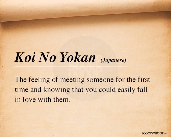 Text - Koi No Yokan (Jараnese) The feeling of meeting someone for the first time and knowing that you could easily fall in love with them SCOOPWHOOPco