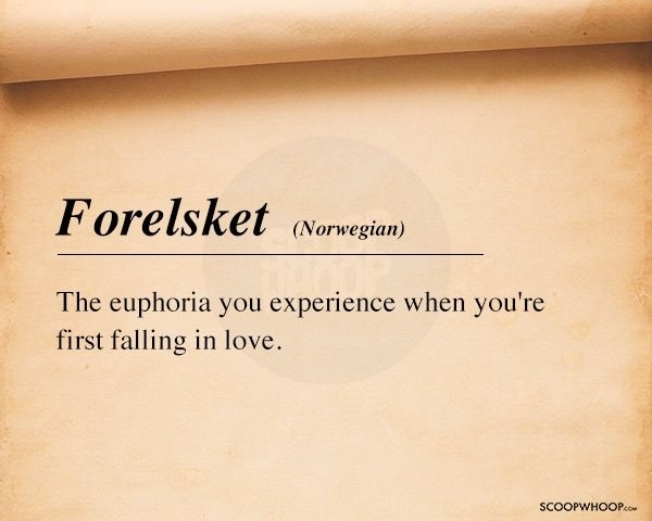 Text - Forelsket Norwegian) The euphoria you experience when you're first falling in love. SCOOPWHOOPco