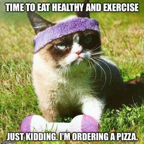 Cat - TIME TO EAT HEALTHY AND EXERCISE JUST KIDDING IMORDERING A PIZZA imgflip.com