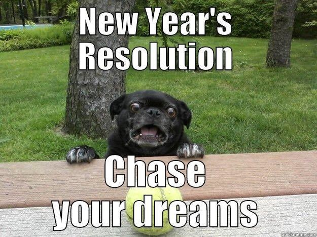 Dog - New Year's Resolution Chase your dreams guickmemecom