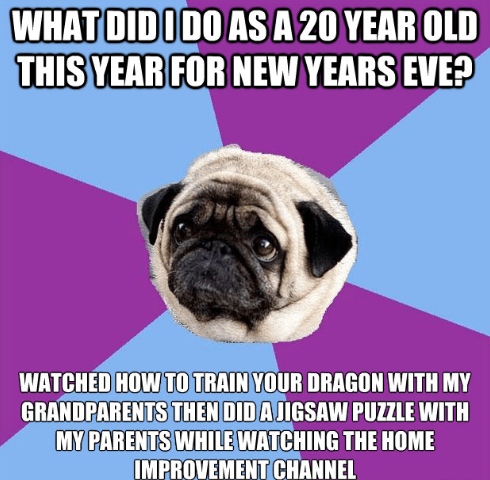 Pug - WHAT DIDODO ASA 20 YEAR OLD THIS YEAR FOR NEW YEARS EVE? WATCHED HOW TO TRAIN YOUR DRAGON WITH MY GRANDPARENTS THEN DID AJIGSAW PUZZLE WITH MY PARENTS WHILE WATCHING THE HOME IMPROVEMENT CHANNEL