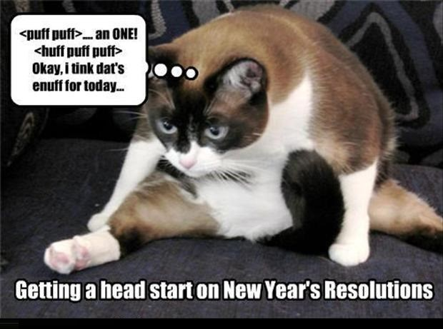 Cat - <puff puff.an 0NE! huff puff puff Okay, i tink dat's enuff for today... Getting a head start on New Year's Resolutions