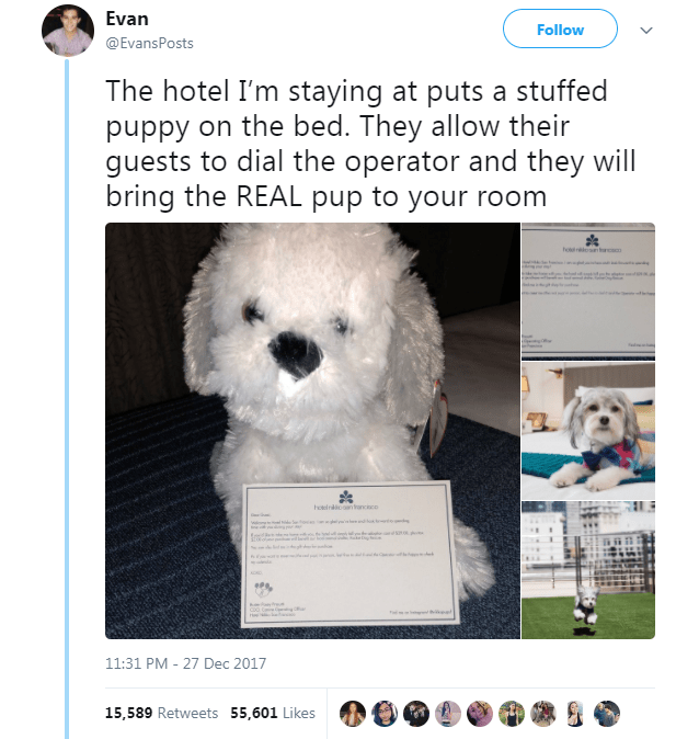 Dog - Evan Follow @EvansPosts The hotel I'm staying at puts a stuffed puppy on the bed. They allow their guests to dial the operator and they will bring the REAL pup to your room hol hotelnoon rancc 11:31 PM - 27 Dec 2017 15,589 Retweets 55,601 Likes