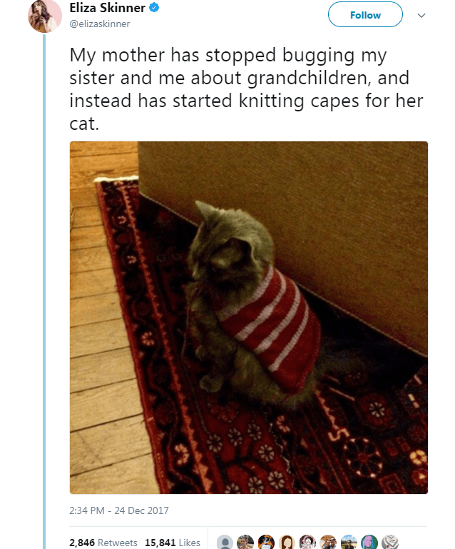 Text - Eliza Skinner Follow @elizaskinner My mother has stopped bugging my sister and me about grandchildren, and instead has started knitting capes for her cat. 2:34 PM - 24 Dec 2017 2,846 Retweets 15,841 Likes