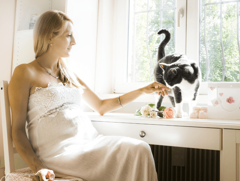wedding photos with cats - Room - Car mariannazamgierimt
