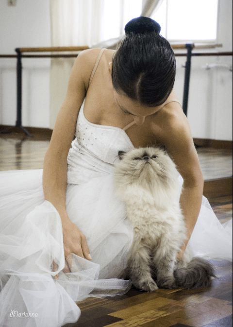 wedding photos with cats - Wedding dress - Marianna