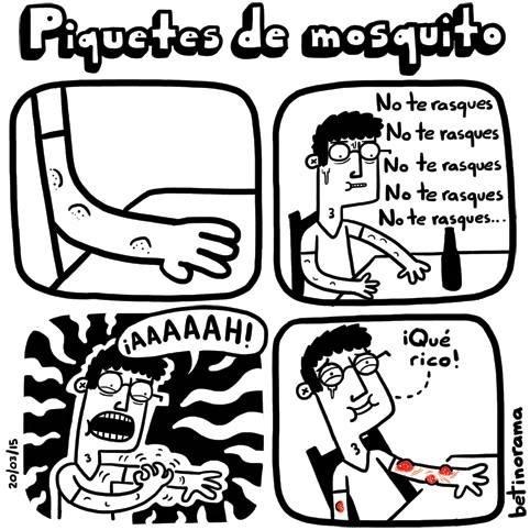 piquetes de mosquito cuando te rascas y sale sangre