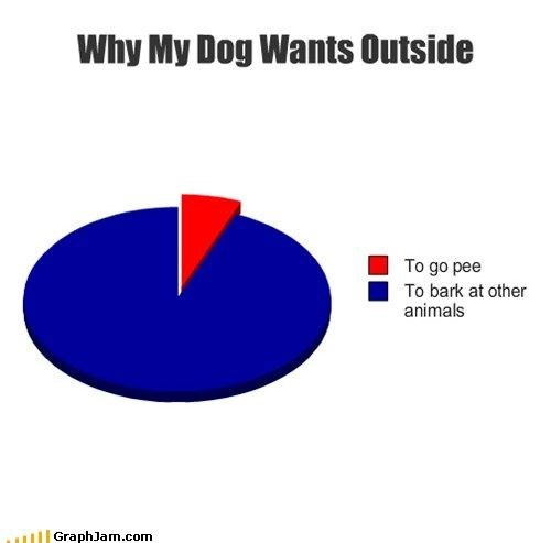 Text - Why My Dog Wants Outside To go pee To bark at other animals GraphJam.com