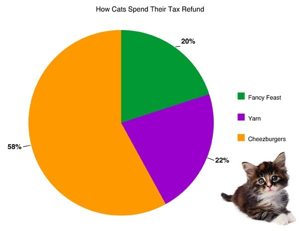 Cat - How Cats Spend Their Tax Refund 20% Fancy Feast Yarn Cheezburgers 58% 22%
