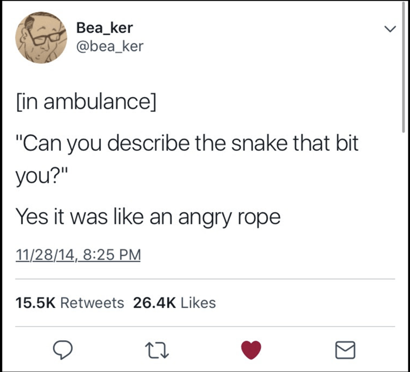 """meme - Text - Bea_ker @bea_ker lin ambulance] """"Can you describe the snake that bit you?"""" Yes it was like an angry rope 11/28/14, 8:25 PM 15.5K Retweets 26.4K Likes"""