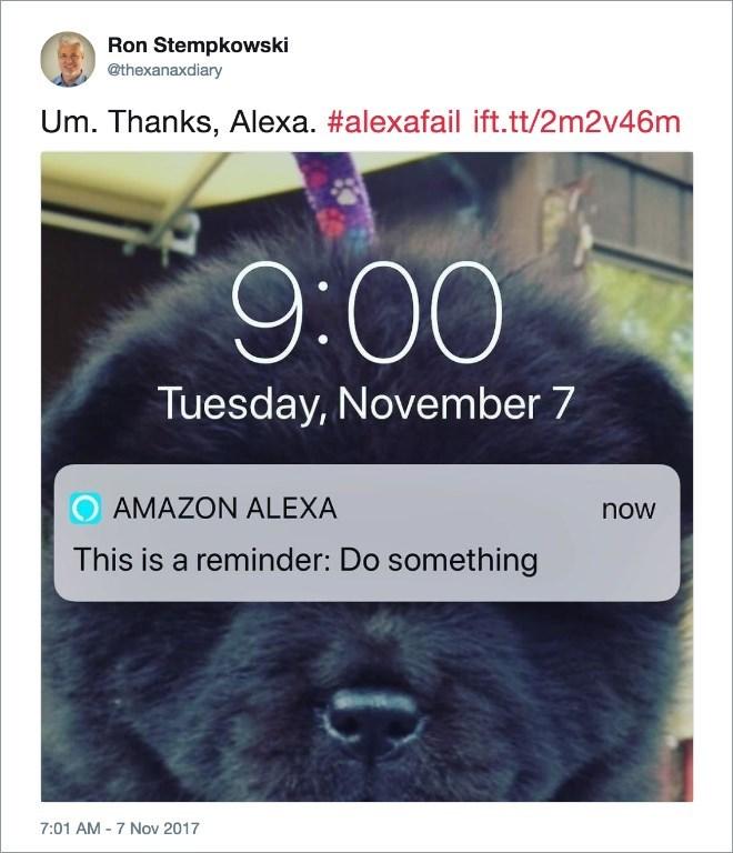 Dog - Ron Stempkowski @thexanaxdiary Um. Thanks, Alexa. #alexafail ift.tt/2m2v46m 9:00 Tuesday, November 7 AMAZON ALEXA now This is a reminder: Do something 7:01 AM -7 Nov 2017