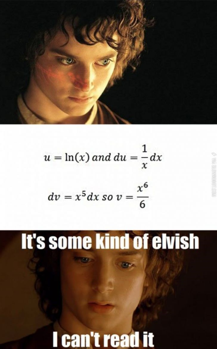 meme - Face - 1 u In(x) and du =dx X x6 dv x5dx so v = 6 It's some kind of elvish I can't read it