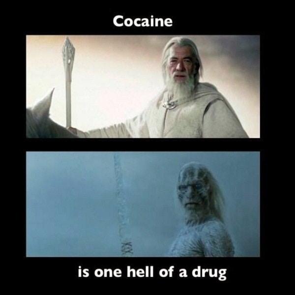 meme - Human - Cocaine is one hell of a drug KX