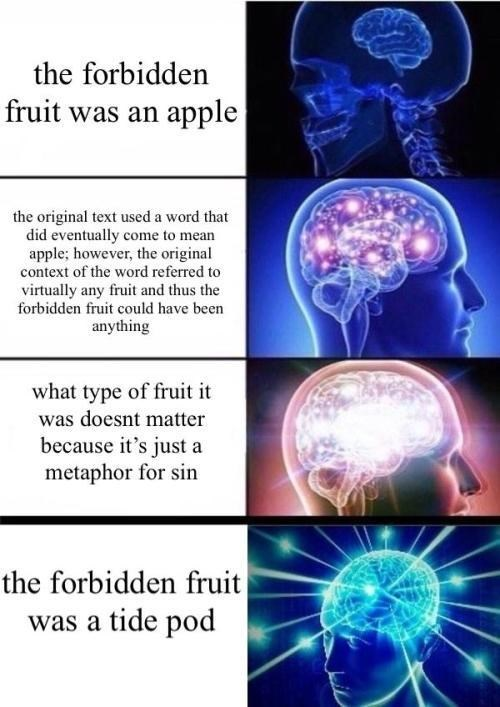 Organism - the forbidden fruit was an apple the original text used a word that did eventually come to mean apple; however, the original context of the word referred to virtually any fruit and thus the forbidden fruit could have been anything what type of fruit it was doesnt matter because it's just a metaphor for sin the forbidden fruit was a tide pod