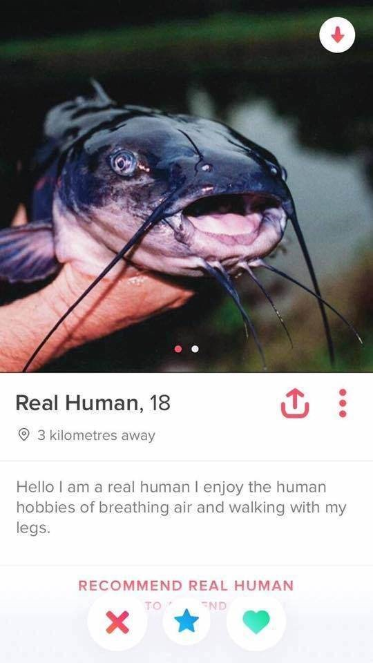 Catfish - Real Human, 18 3 kilometres away Hello I am a real human I enjoy the human hobbies of breathing air and walking with my legs. RECOMMEND REAL HUMAN TO ND X