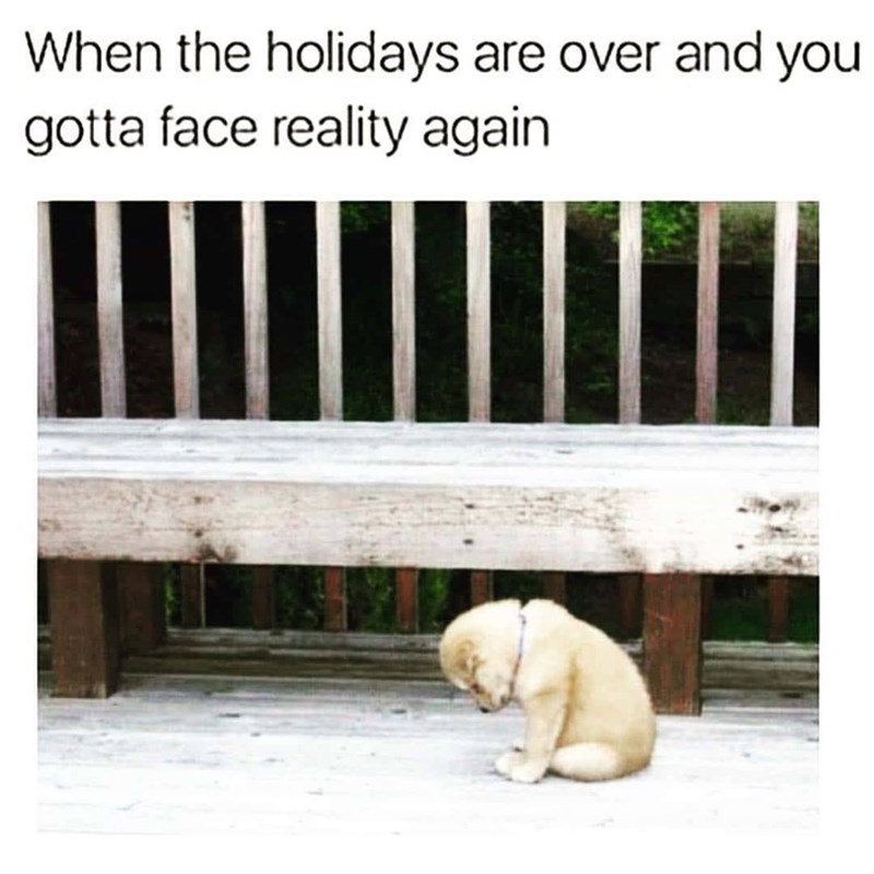Text - When the holidays are over and you gotta face reality again