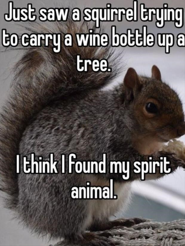 Squirrel - Just saw a squirrel trying tocarry a wine bottle up a tree. Ithink I found my spirit animal.