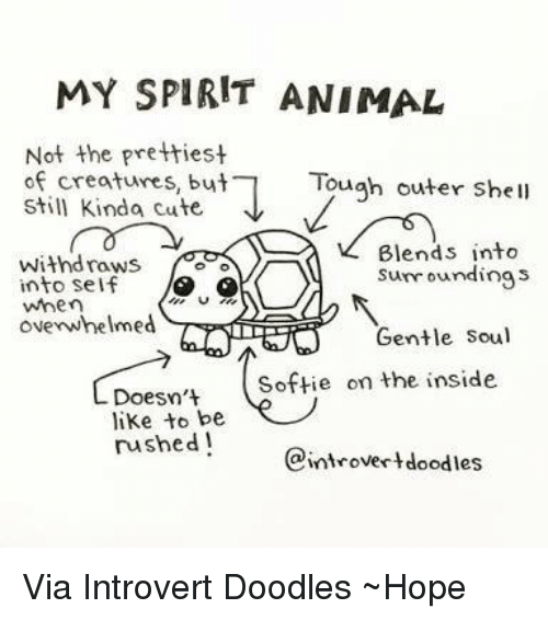 Text - MY SPIRIT ANIMAL Not the prettiest of creatures, but Still Kinda cute Tough outer shell Blends into sunroundings withdraws into self when ovenwhelmed Gentle Soul Softie on the inside Doesn't like to be rushed! eintrovertdoodles Via Introvert Doodles Hope