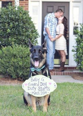 Mammal - Baby G Guard Dog Duty Stats March 2014