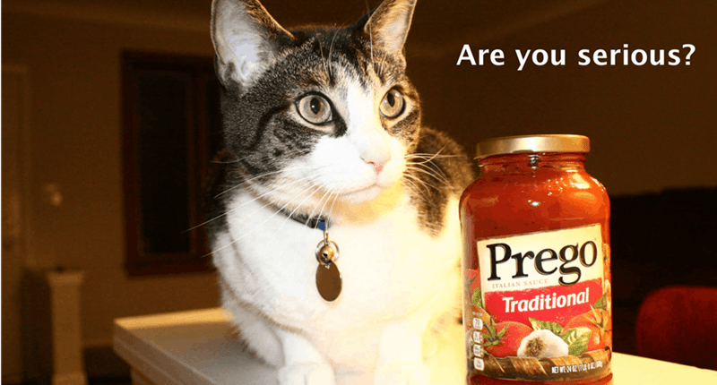 Cat - Are you serious? Prego ITALIAN SAUCE Traditional NET W02