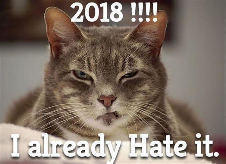 Cat - 2018!!!! I already Hate it.