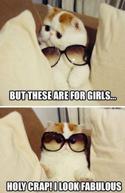 Eyewear - BUTTHESEARE FOR GIRLS.. HOLY CRAP!OLOOK FABULOUS