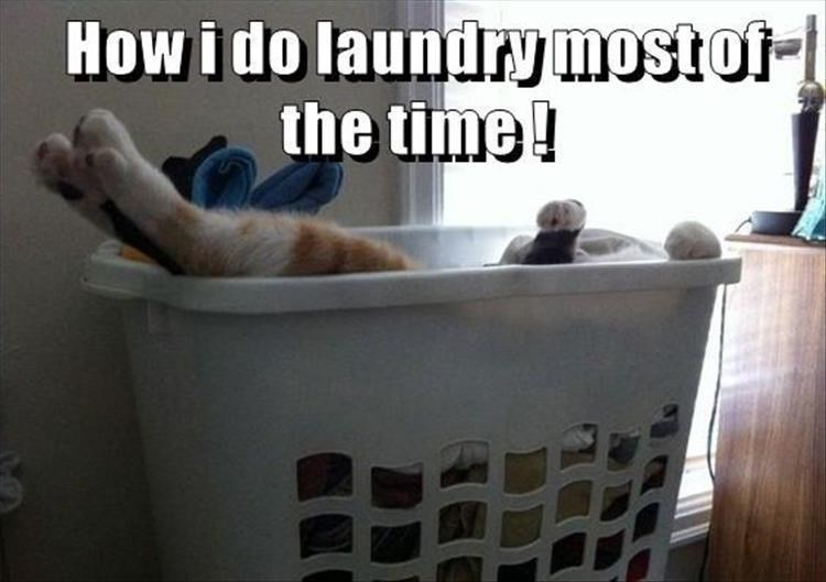 Product - How i do laundry most of- the time!