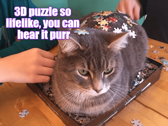 Cat - 3D puzzle so lifelike, you can hear it purr