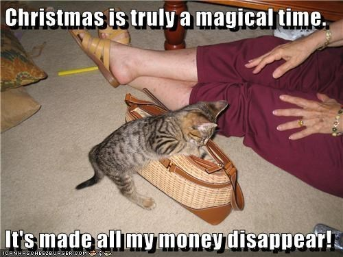 Cat - Christmas is truly a magical time. It's made all mymoney disappear! ICANHASCHEEZEURGER.COM