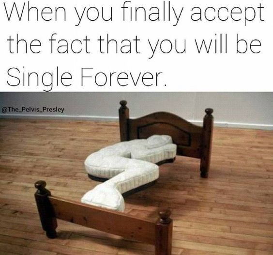 Product - When you finally accept the fact that you will be Single Forever. @The Pelvis Presley
