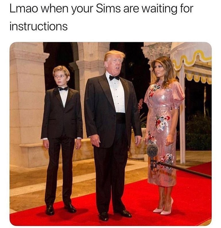 Funny meme about when your sims are waiting for instructions.