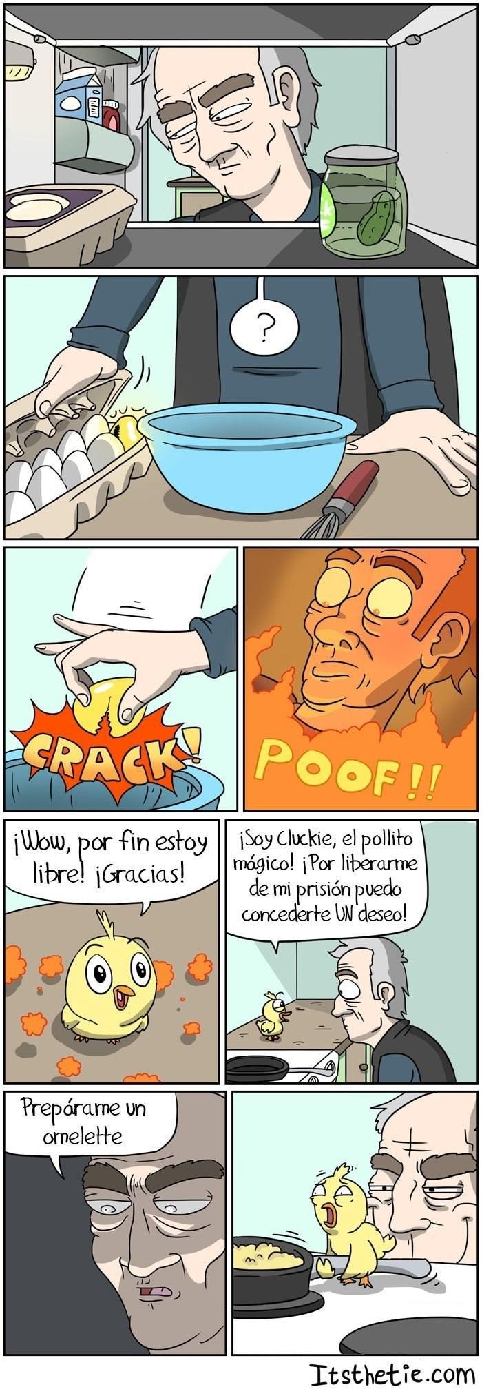 pollito es obligado a hacer un omelette
