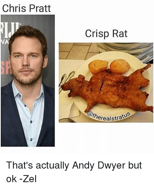 Fried food - Chris Pratt Crisp Rat NA SF therealstree That's actually Andy Dwyer but ok -Zel