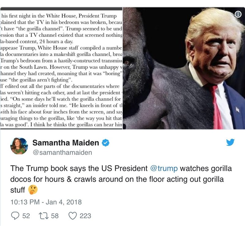 """Text - his first night in the White House, President Trump olained that the TV in his bedroom was broken, becau t have """"the gorilla channel"""". Trump seemed to be und ession that a TV channel existed that screened nothing la-based content, 24 hours a day. appease Trump, White House staff compiled a numbe la documentaries into a makeshift gorilla channel, broa Trump's bedroom from a hastily-constructed transmiss r on the South Lawn. However, Trump was unhappy v hannel they had created, moaning that"""