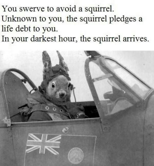 meme - Vehicle - You swerve to avoid a squirrel Unknown to you, the squirrel pledges a life debt to you. In your darkest hour, the squirrel arrives