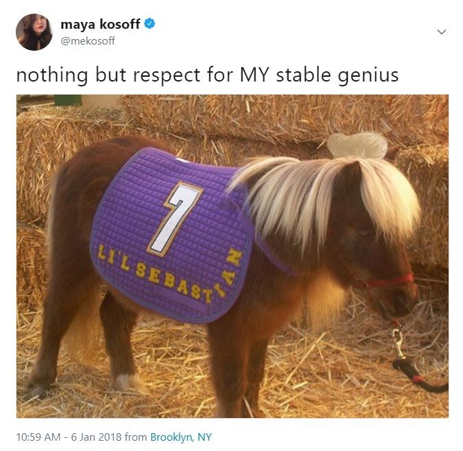 Horse - maya kosoff @mekosoff nothing but respect for MY stable genius 1 LILSEBAST 10:59 AM 6 Jan 2018 from Brooklyn, NY
