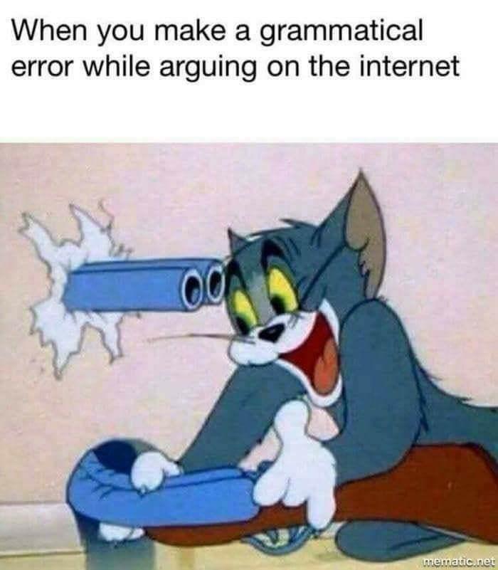 Cartoon - When you make a grammatical error while arguing on the internet оQ mematic.net