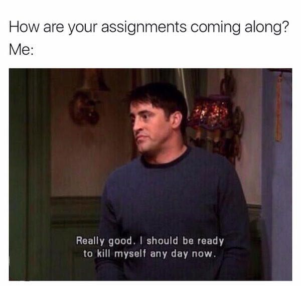 Text - How are your assignments coming along? Mе: Really good.I should be ready to kill myself any day now.