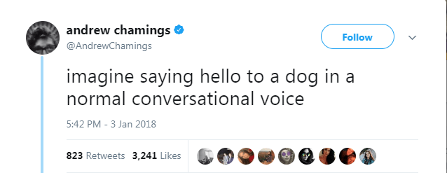 Text - andrew chamings Follow @AndrewChamings imagine saying hello to a dog in a normal conversational voice 5:42 PM - 3 Jan 2018 823 Retweets 3,241 Likes